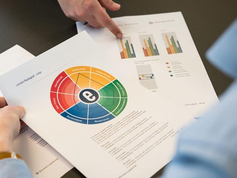Personer ser på DISC profilrapport på udvidet niveau